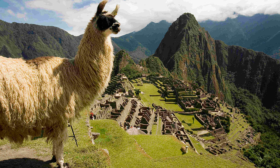 Tour Packages to Machu Picchu
